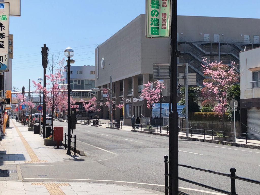 【国分中央レジデンス】春の風景~国分新市街通り