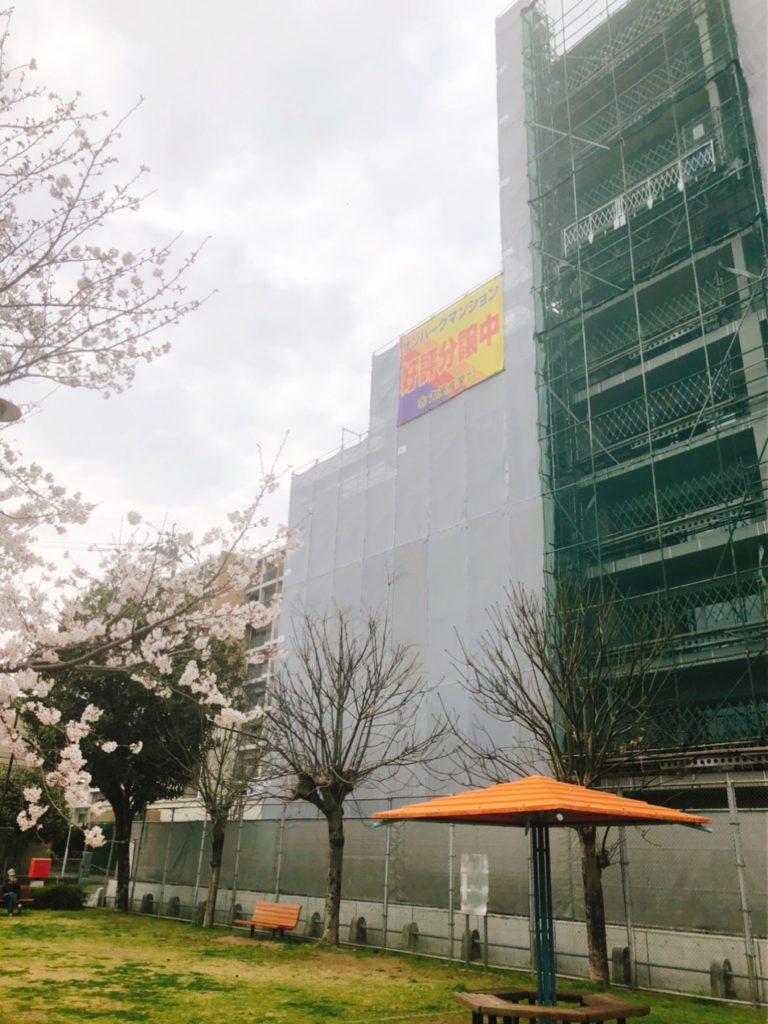 【健軍レジデンス】栄町公園の大桜